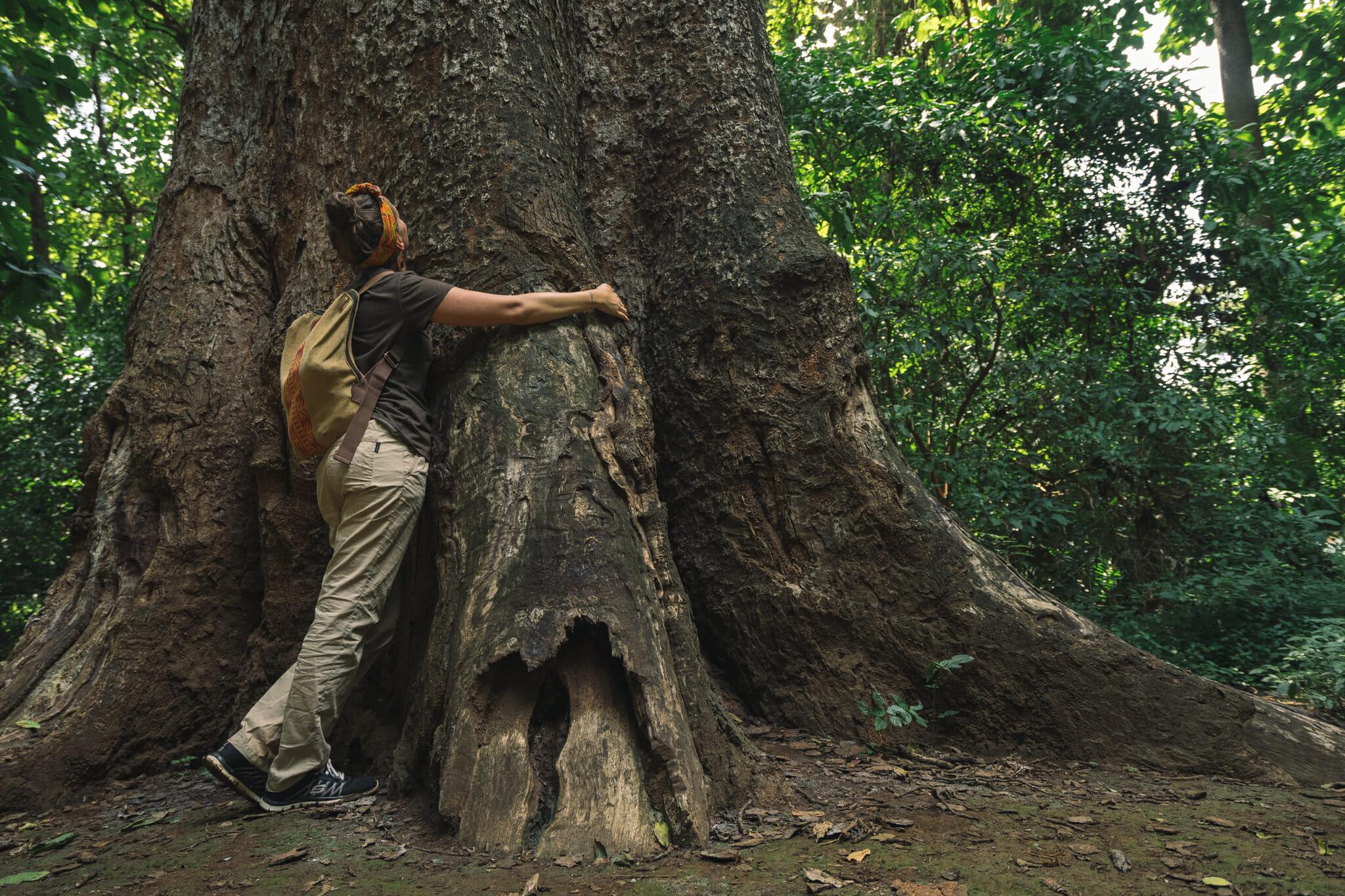 En harmonie avec la nature à Arusha en Tanzanie