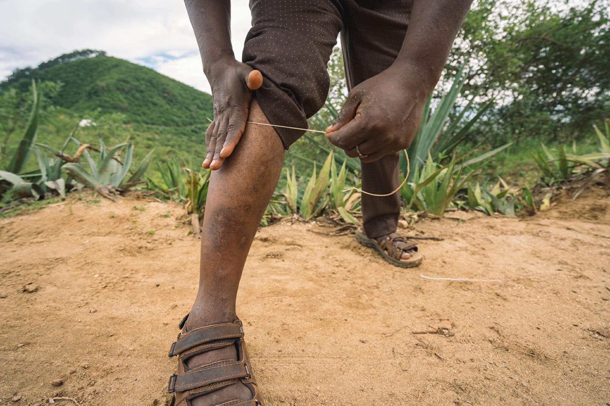 Découverte du sisal avec John lors de l'immersion dans le village d'Endallah en Tanzanie