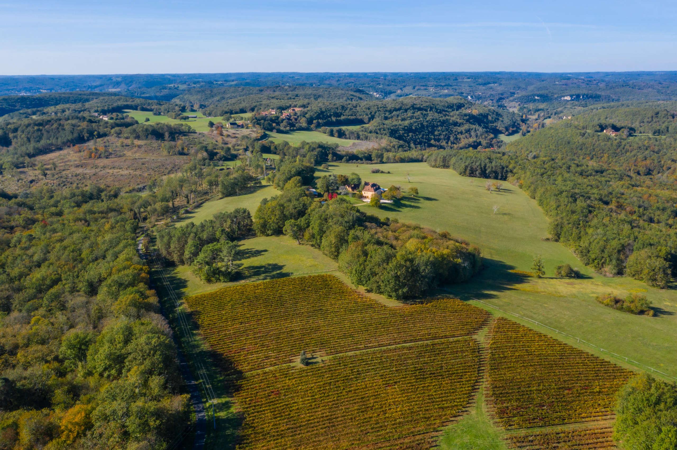 Vue aérienne sur les vignes du périgord noir