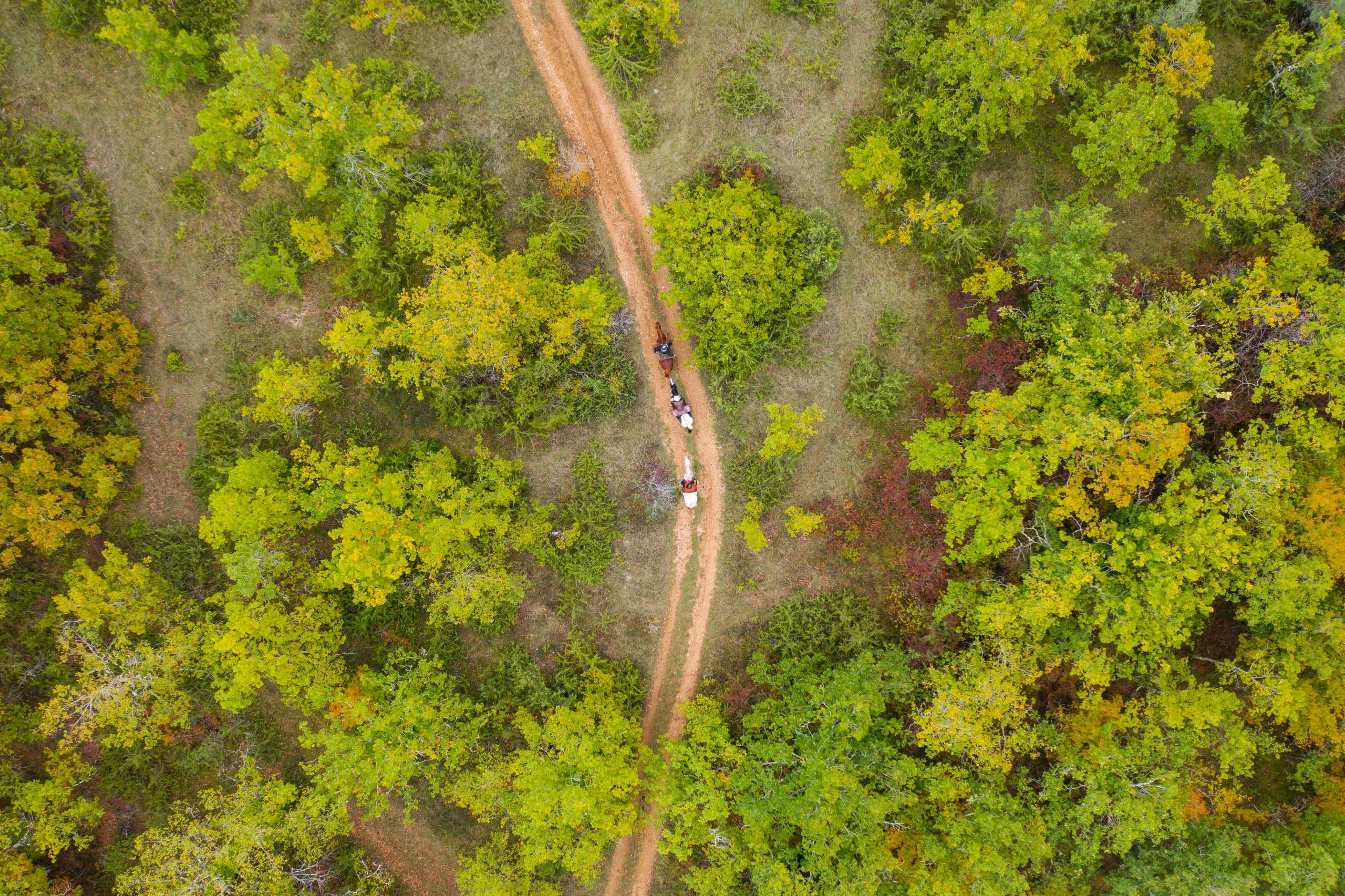 vue aérienne sur la vallée de la vézère dans le perigord noir