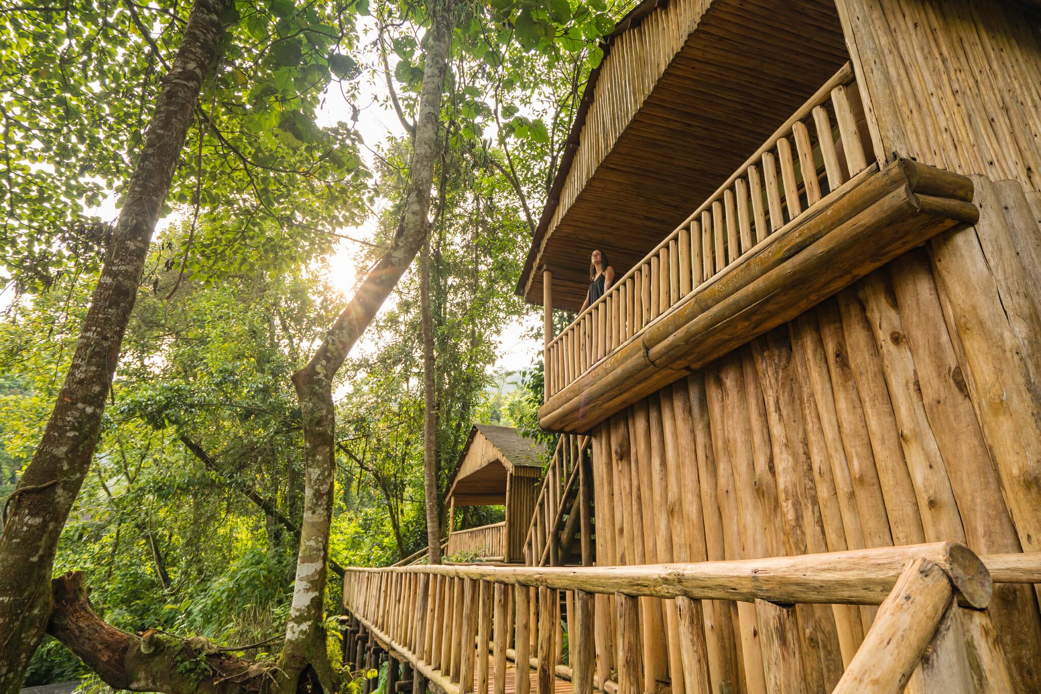Vue sur le buhoma lodge au coeur de la forêt de bwindi en ouganda