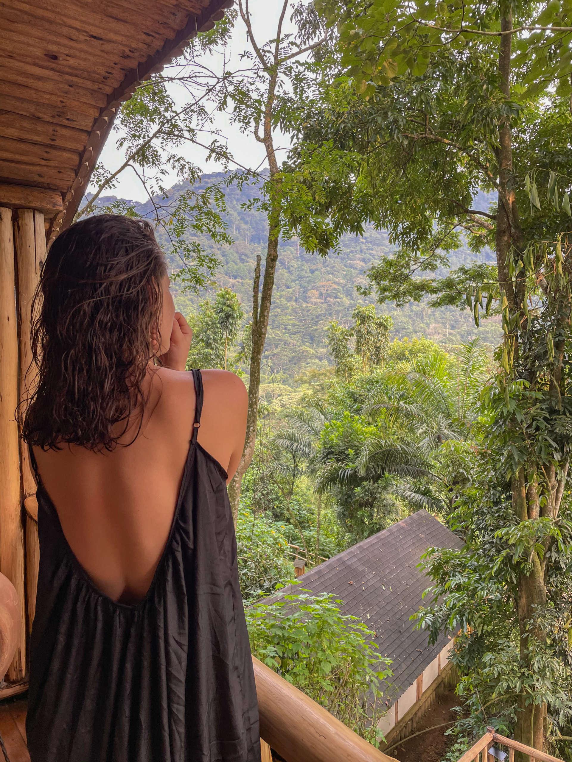 vue sur la forêt de bwindi en ouganda