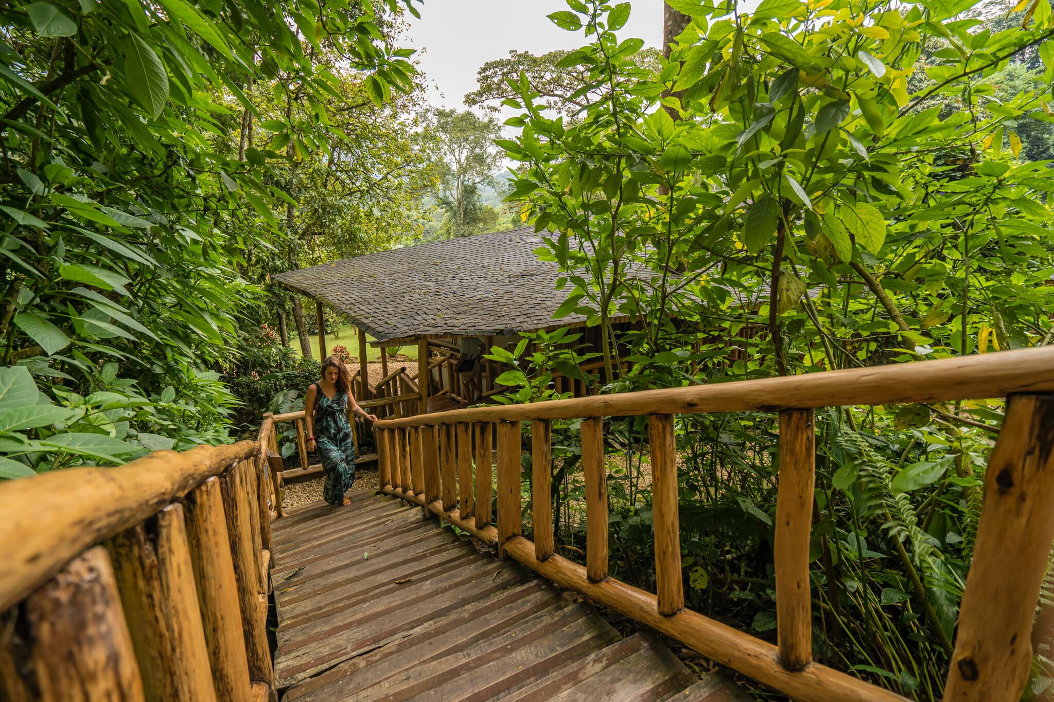 espace détente du buhoma lodge à bwindi