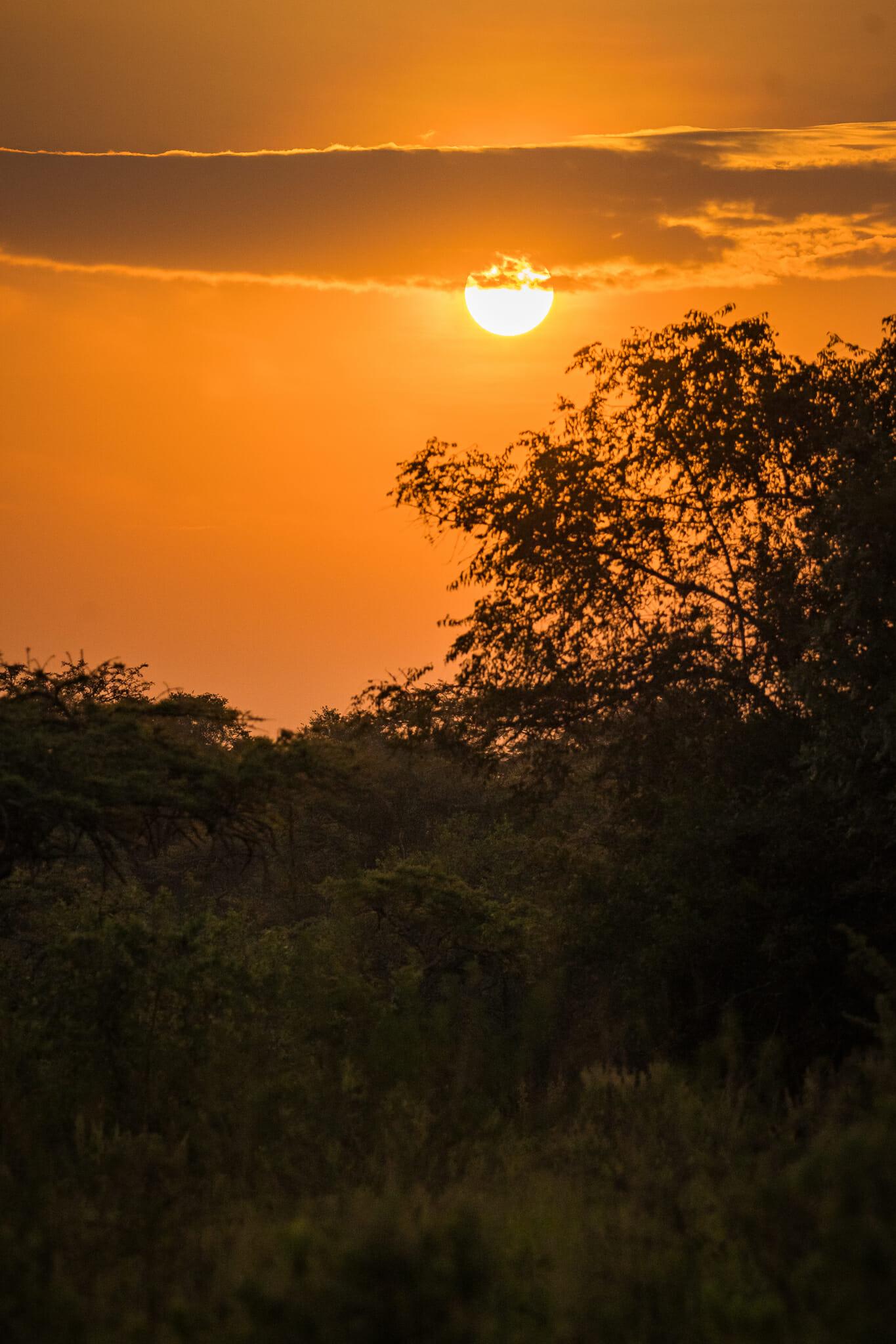 coucher de soleil sur le parc mburo en ouganda