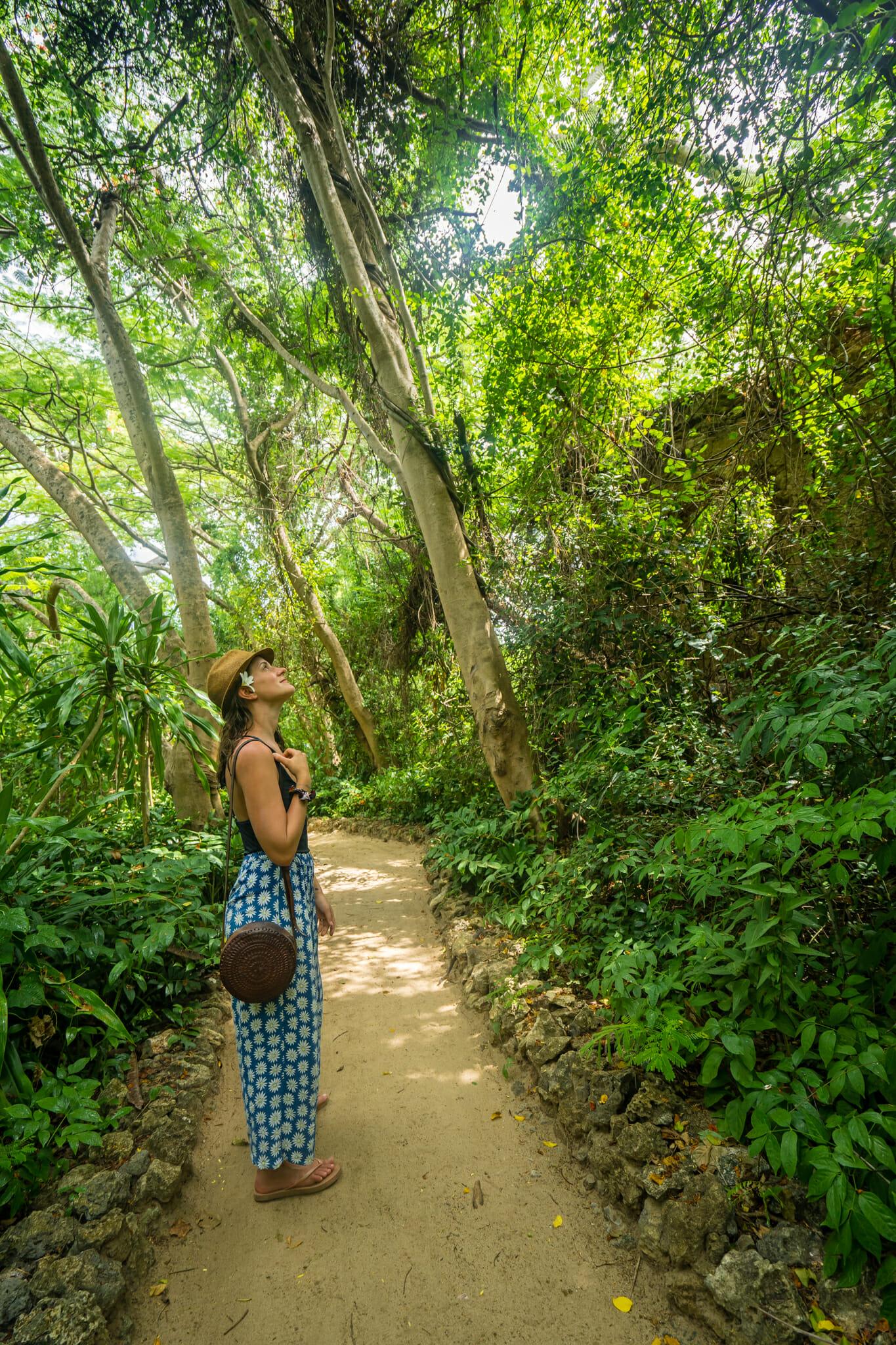 Végétation luxuriante sur l'île de Chole